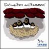 Baustopp für Erweiterung der  Schweinemastanlage Tornitz